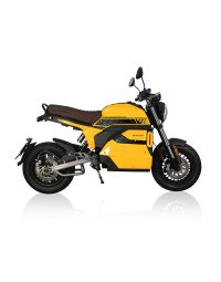 800x1020_Yellow